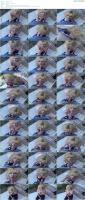81215382_racquel-140-flv.jpg