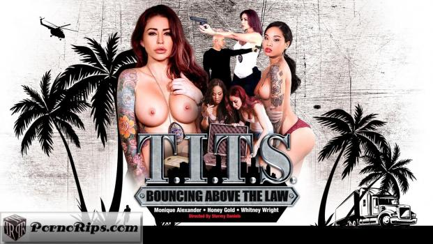 digitalplayground-18-09-12-t-i-t-s-bouncing-above-the-law.jpg
