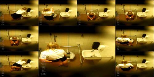 Office_toilet95