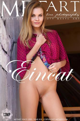 Eincat