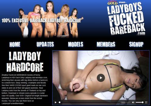 LadyboysFuckedBareback (SiteRip) Image Cover