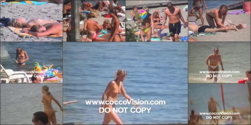 Coccozella__karl_s_home_videos__1-european_beaches