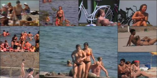 Coccozella__karl_s_home_videos__3-european_beaches